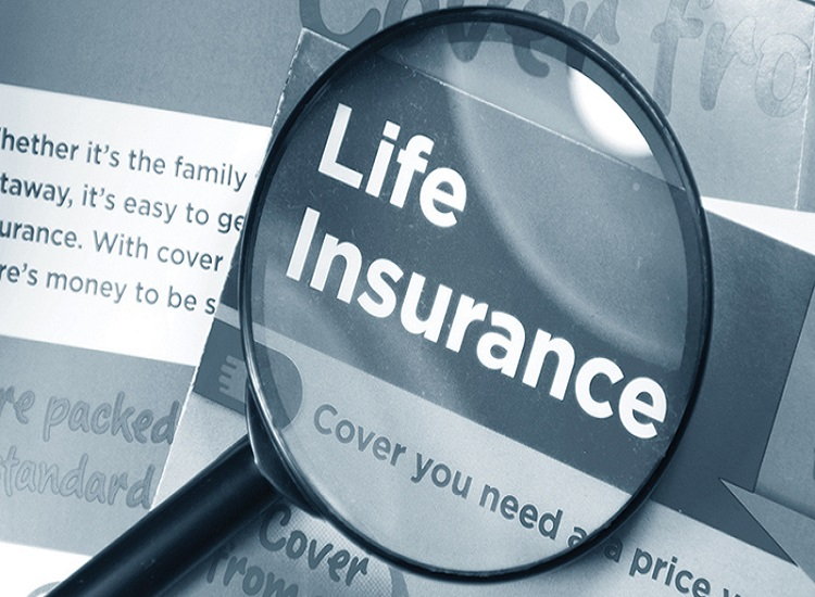 Are You Shopping for the Best Term Life Insurance Rates in Florida